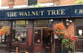 The Walnut Tree
